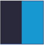 Navy/Aqua